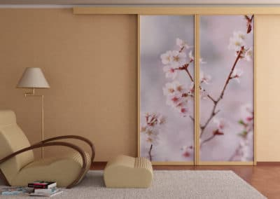 top track sliding doors with image